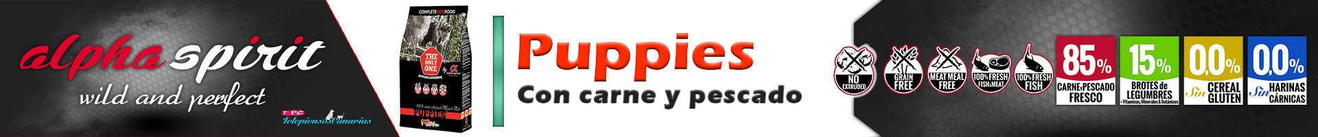 Alpha Spirit alimento puppies, pienso con pavo 35%