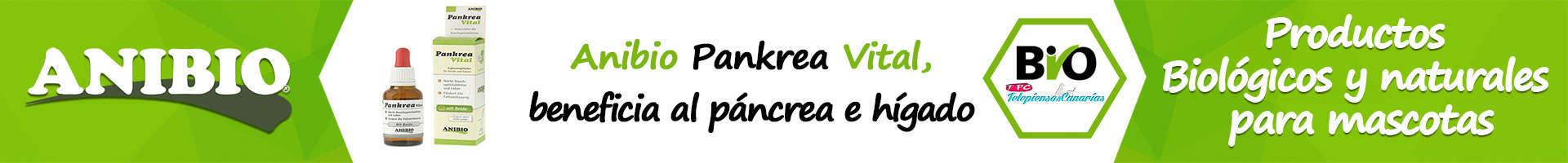 Anibio pankrea vital, refuerza el páncreas del perro y el gato