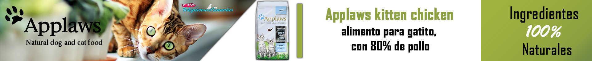 Applaws pienso para gato cachorro, con 80% de pollo