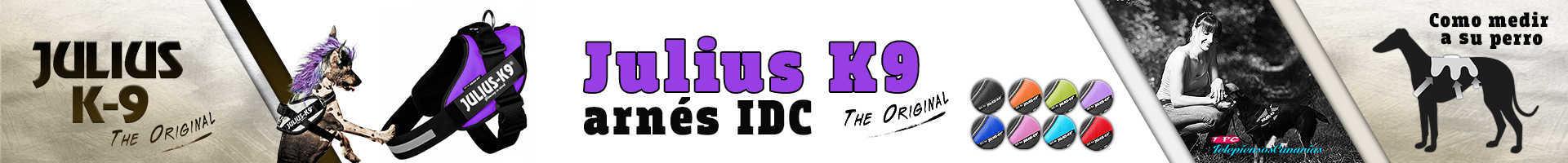 Julius-K9 arnés idc color violeta, perfección ergonómica