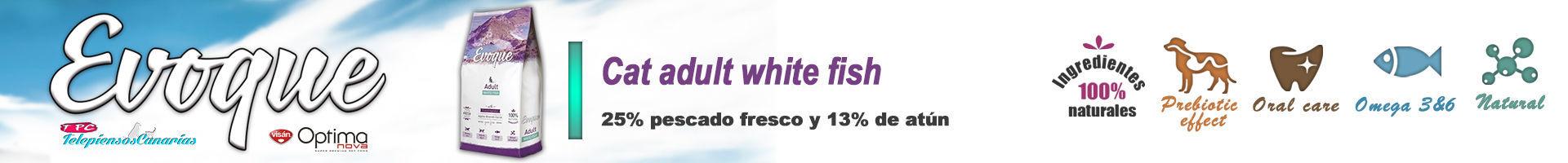 Evoque cat adult white fish, alimento con 25 % de pescado blanco