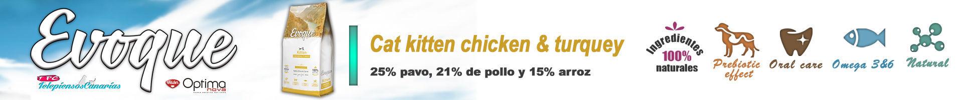 Evoque cat kitten chicken and turquey, nutrición con carne fresca