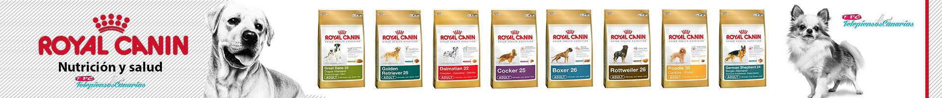 Royal Canin alimentacion perros promo Telepiensoscanarias 2017