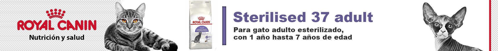 Royal Canin sterilised para gatos adultos esterilizados de 1 a 7 años