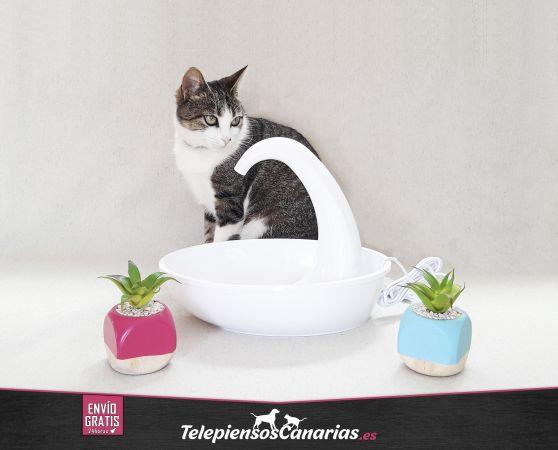Fuente Pioneer para gatos automática