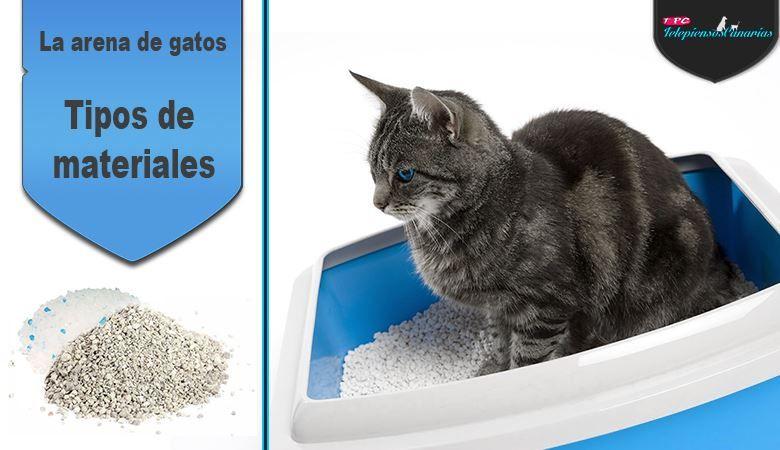 La arena de gato más usada en el lecho, ha sido la sepiolita