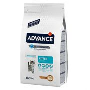 Advance cat kitten pollo y arroz para gatitos y hembras gestantes