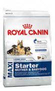 Royal Canin maxi starter para madres gestantes y cachorros en destete