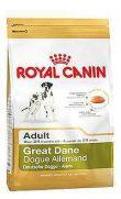 Royal Canin raza gran danés adulto y maduro más de 24 meses de edad