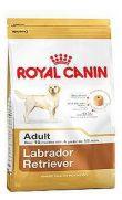 Royal Canin raza labrador retriever adulto y maduro más de 15 meses