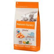 Natures variety selected, pienso para gatos adultos de salmón, sin cereal