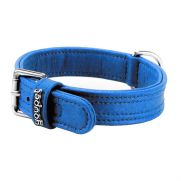 youpet dared collar perro azul telepiensoscanarias