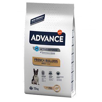 Advance perro bulldog frances telepiensoscanarias 4 4 2019 211115