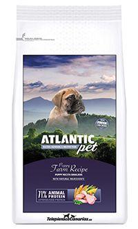 Atlantic pet puppy chicken telepiensoscanarias