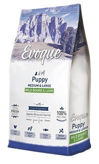 Evoque puppy medium large wild board lamb