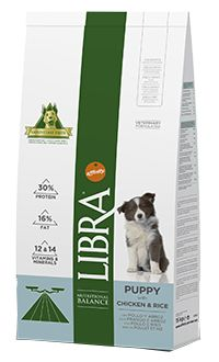 Libra puppy TelepiensosCanarias 11 6 2018 213916