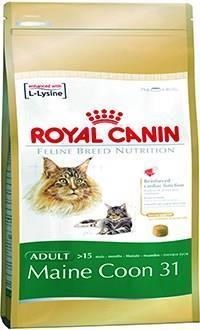 royal canin maine coon para gatos a partir de 15 meses de edad. Black Bedroom Furniture Sets. Home Design Ideas
