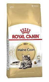 Royal Canin gato maine coon Telepiensoscanarias
