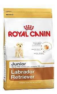 Royal Canin raza labrador retriever cachorro Telepiensoscanarias