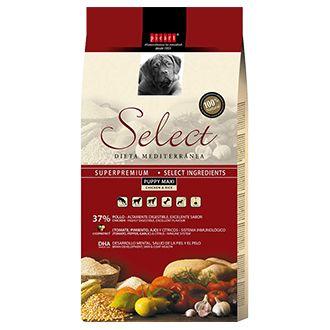 select puppy maxi telepiensoscanarias 2019