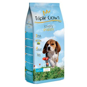 triple crown lovely puppy telepiensoscanarias 10 6 2019 202434
