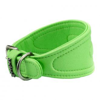youpet dared galgo collar perro verde telepiensoscanarias