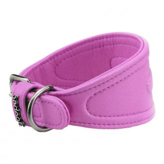 youpet dared galgo collar perro violeta telepiensoscanarias